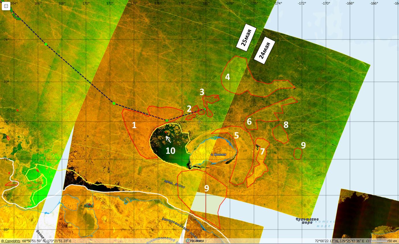 Рис.5. Тяжелые районы вокруг острова Врангеля (Sentinel-1, EW, 24-25 мая .2020).